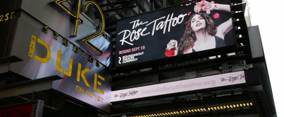 BWW TV: Watch Broadway Walk the Red Carpet on Opening Night of THE ROSE TATTOO