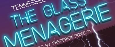 BWW Interview: V. J. Liberatori of THE GLASS MENAGERIE  at Aux Dog Theatre