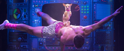 BWW Review: Vegas In Three Acts. From The Sublime To The Obscene To The Badonkadonk.