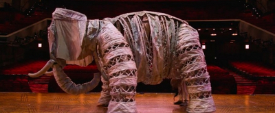 VIDEO: See How THE LION KING's Elephant Is Brought To Life