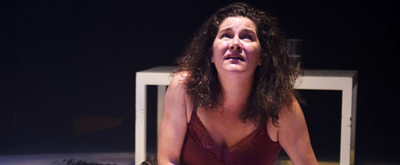 BWW Review: Science Meets Family Dysfunction in MOSQUITOES at Steep Theatre