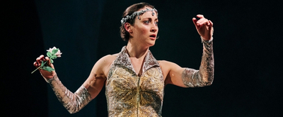 BWW Review: Synetic Theater's THE SNOW QUEEN Pays Homage to Other Works