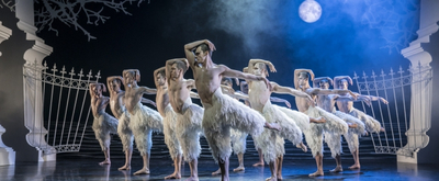 BWW Review: MATTHEW BOURNE'S SWAN LAKE at The Kennedy Center