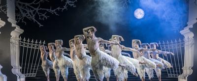 BWW Review: Matthew Bourne's SWAN LAKE a Joyful Holiday Treat