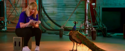 VIDEO: NBC Releases 'Peacock Knows Comedy' Featurette