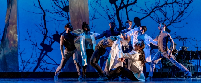 BWW Interview: Nimbus Dance Works Brings Equity Home