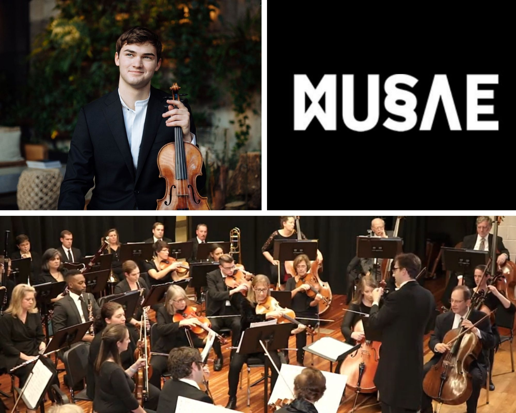 Adelphi Orchestra To Celebrate National Arts And Humanities Month