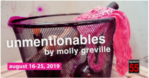 Boston-Based Young Women Artists Bring UNMENTIONABLES To Space 55