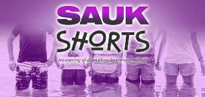 Cast Announced For SAUK SHORTS at The Sauk