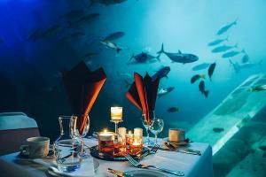 National Marine Aquarium Announces New October Dates For Dining At The Aquarium