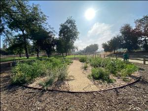 Parks Foundation To Plant