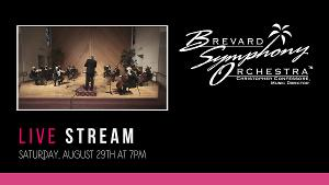 Brevard Symphony Orchestra Presents STREAMING STRINGS Orchestra Performance