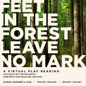 Live Virtual Reading of FEET IN THE FOREST LEAVE NO MARK to be Presented in December