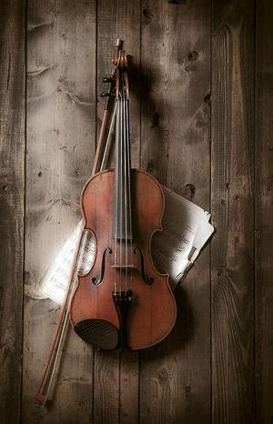 Quartet 131 To Play Works by Schubert & Bloch At Merkin Hall