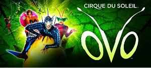 OVOFrom Cirque Du Soleil Announced At Thompson-Boling Arena For 7 Performances Only