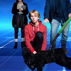 Chicago Street Theatre Presents THE CURIOUS INCIDENT OF THE DOG IN THE NIGHT-TIME