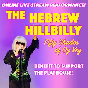 Down Home Diva Shelley Fisher Live-Stream Concert To Benefit Santa Monica Playhouse