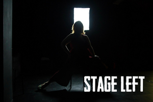 STAGE LEFT, A Documentary Web Series That Explores Theatre And Community, Will Debut In 2020