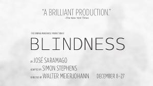 Shakespeare Theatre Company Welcomes Back Patrons To Sidney Harman Hall With BLINDNESS