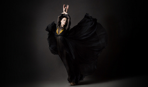 Greta Hodgkinson To Retire As Principal Dancer At National Ballet of Canada
