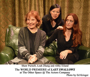 Pandelia's Canary Yellow Company Presents The World Premiere Of LAST SWALLOWS