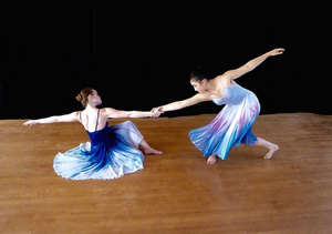 North Shore Civic Ballet's Holiday Auction Launches November 15