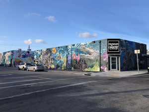 The Museum Of Graffiti, A New Contemporary Art Museum, To Open In Miami