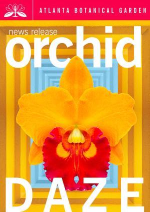 Orchid Daze Celebrates Latin Landscapes
