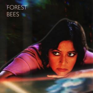Forest Bees Releases New Album