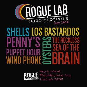 Rogue Artists Ensemble Launches 2020 'Rogue Lab Nano Projects'