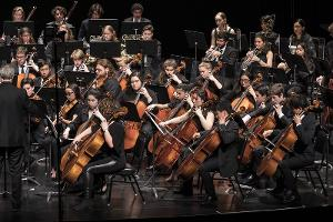 Santa Barbara Youth Symphony Concerto Competition Is Now Open For Auditions