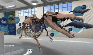 New 3D Exhibit By University of Michigan Museum Of Natural History Offers Up-Close Encounters With Prehistoric Whales