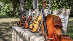 Savannah Philharmonic To Perform Family Friendly Concert in June