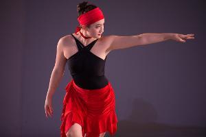 North Shore Civic Ballet's Summer Auction Announced