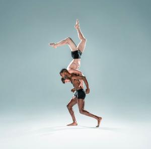 Columns Dance Festival To Feature Pilobolus, Sonia Plumb Dance Company, and More