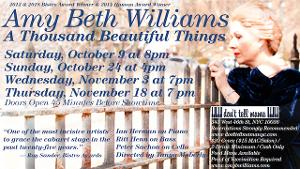 Amy Beth Williams Reprises A THOUSAND BEAUTIFUL THINGS at Don't Tell Mama