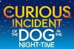 THE CURIOUS INCIDENT OF THE DOG IN THE NIGHT-TIME Grosses