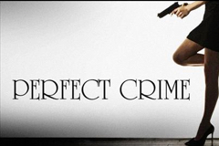 Perfect Crime Logo