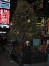 Lighting the Broadway Christmas Tree in Times Square - 