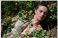 Briar Rose & the Thirteenth Fairy