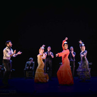 Compania Flamenca  in Long Island