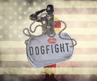 Dogfight in Connecticut