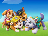 Paw Patrol Live! Race To The Rescue in Broadway