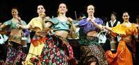 Hungarian Folk Ensemble in Hungary