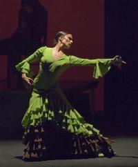 Flamenco Fire in Toronto
