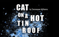 Cat On A Hot Tin Roof in San Francisco