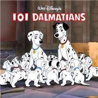LOL Dalmatians in Long Island