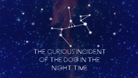 The Curious Incident of the Dog in the Night-Time in Omaha