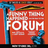 A Funny Thing Happened on the Way to the Forum  in Broadway