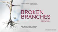 Broken Branches in Toronto